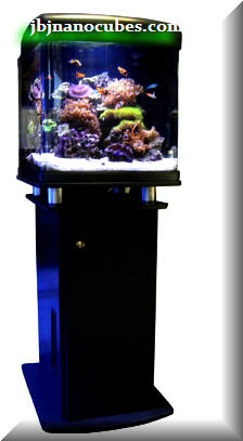28g Jbj Hqi Nanocube And Stand More Michigan Reefers