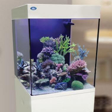 jbj 20 gallon cubey midsize aquarium cn 20 w. Black Bedroom Furniture Sets. Home Design Ideas