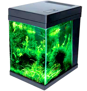 Jbj 3gallon Cubey Black